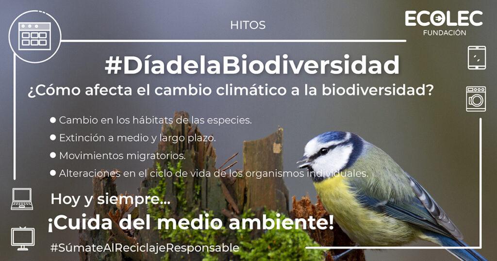 Cómo afecta el Cambio Climático a la Diversidad Biológica