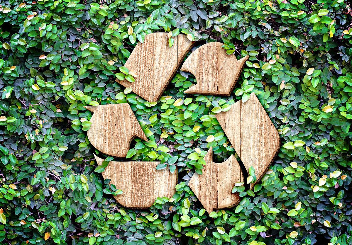 #GreenBlog